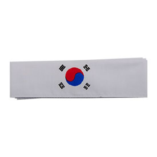 Korean Flag Headband 01