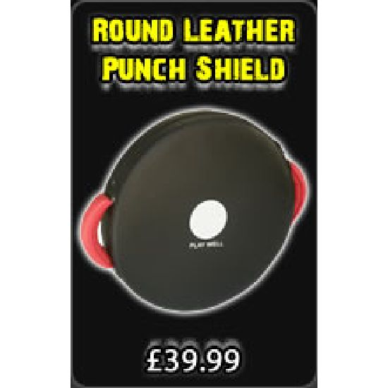 Pro mma Round Leather Punch Shield