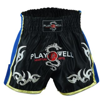 Muay Thai Competition Playwell Fight...