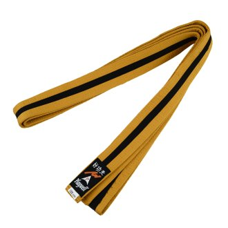 Choi Belt: Satin Gold Belt With Black Stripe