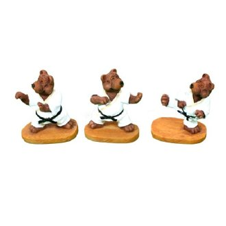 Mini Three Bear Karate Set