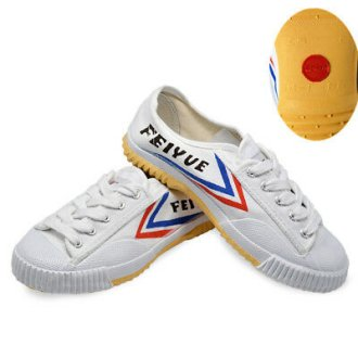 Dafu Feiyue Wushu Training Shoes : WHITE