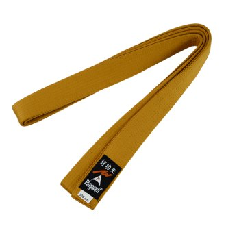 Choi Belt: Solid Plain Gold Belt