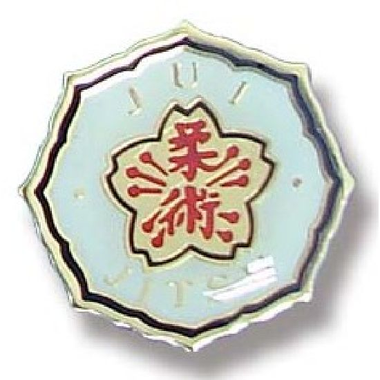 Ju-Jitsu Lapel Badge 10 - Click Image to Close